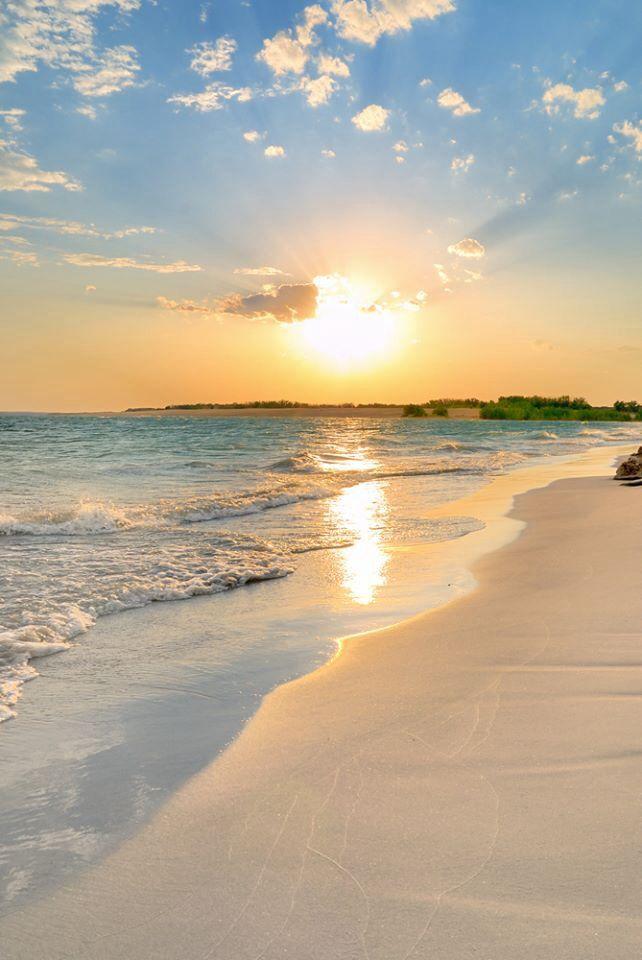Vacaciones en la playa...