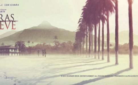 cartel-banner-palmeras-en-la-nieve-893