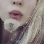 diente de león de La voz de Archer by paginasdechocolate