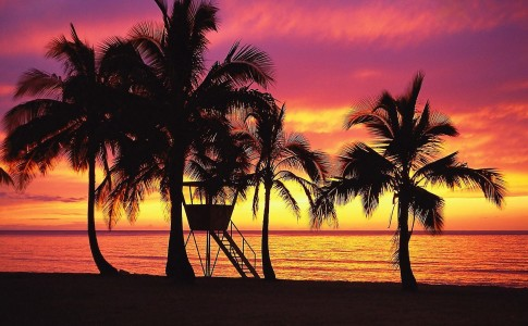 cabecera para Aloha, Baby by paginasdechocolate